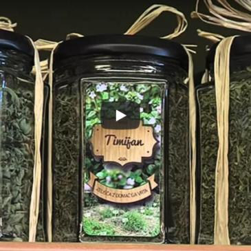 Ekološka zelišča in čaji Biobrazda