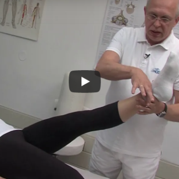 Vaje za ledveni del hrbtenice – Mogy